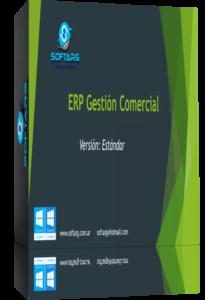 ERP Versión estándar